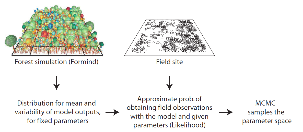 biodiversity theory and quantification Quantitative research is based on numerical data, which can be analyzed using statistics this type of research focuses on pinpointing what, where, when, how often and how long social phenomena occur.