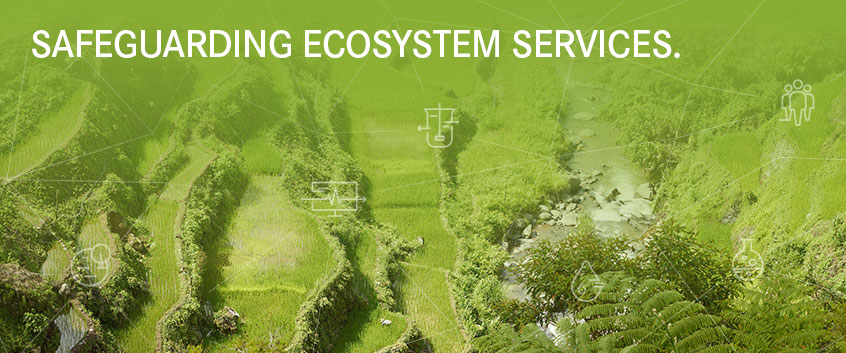 SAFEGUARDING ECOSYSTEM SERVICES