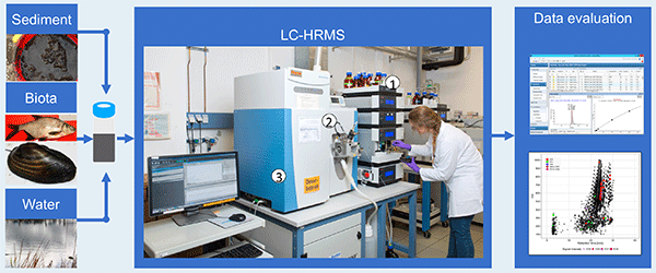 Target and non-target LC-HRMS screening in complex samples