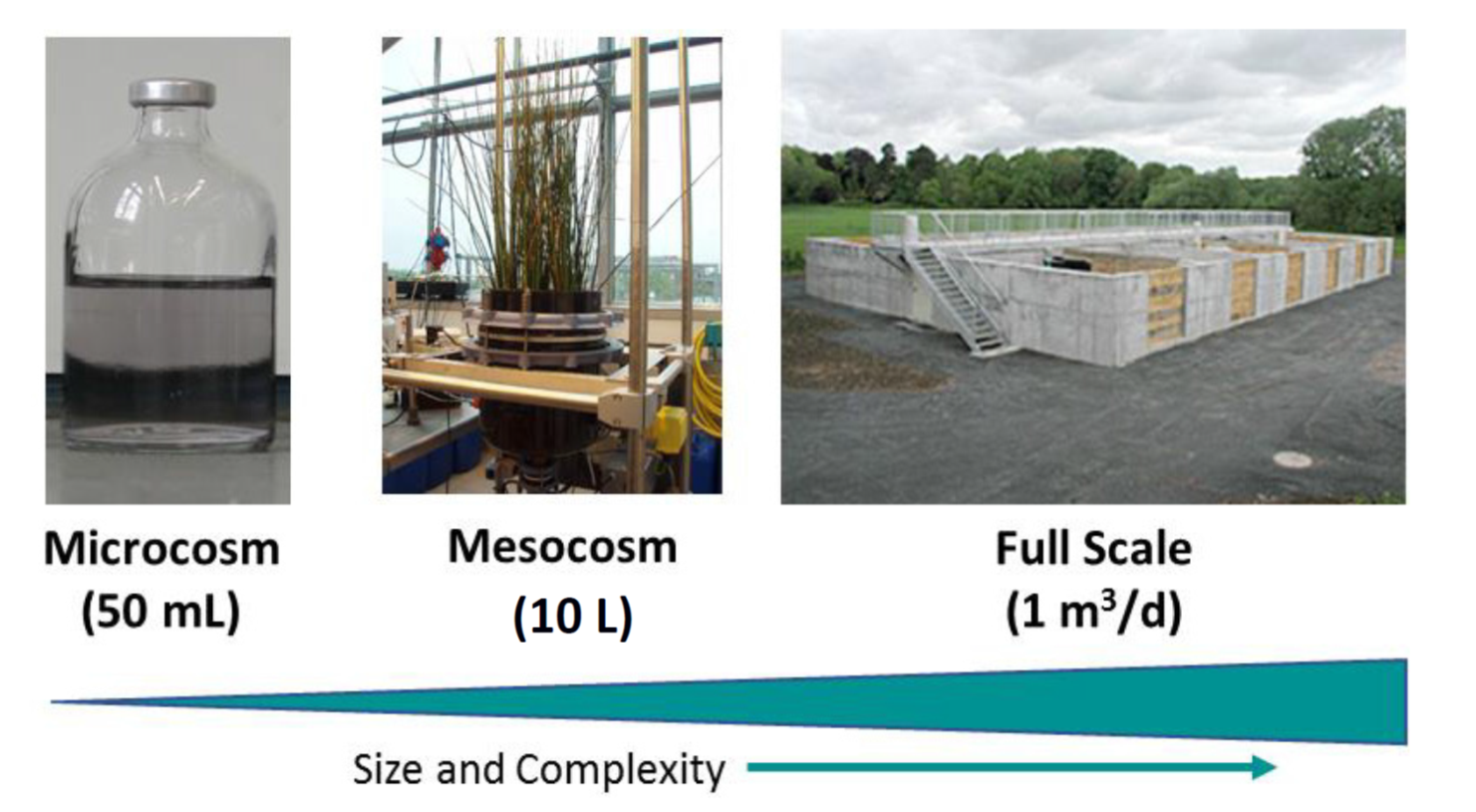 different size and complexity scales: lab microcosms (50 mL), mesocosms (10 L), and pilot-scale