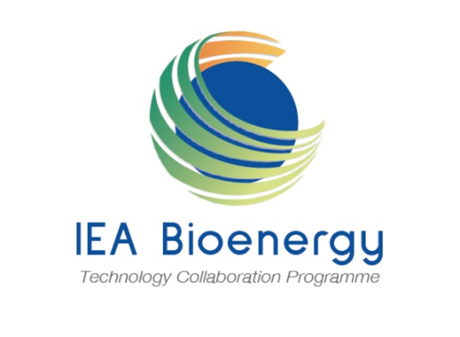 IEA Bioenergy Deployment of BECCS/U value chains, Technological pathways, policy options and business models, IEA Bioenergy: Task 40, June 2020