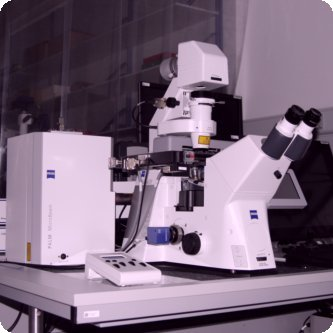 Zeiss Palm laser-microdissection system