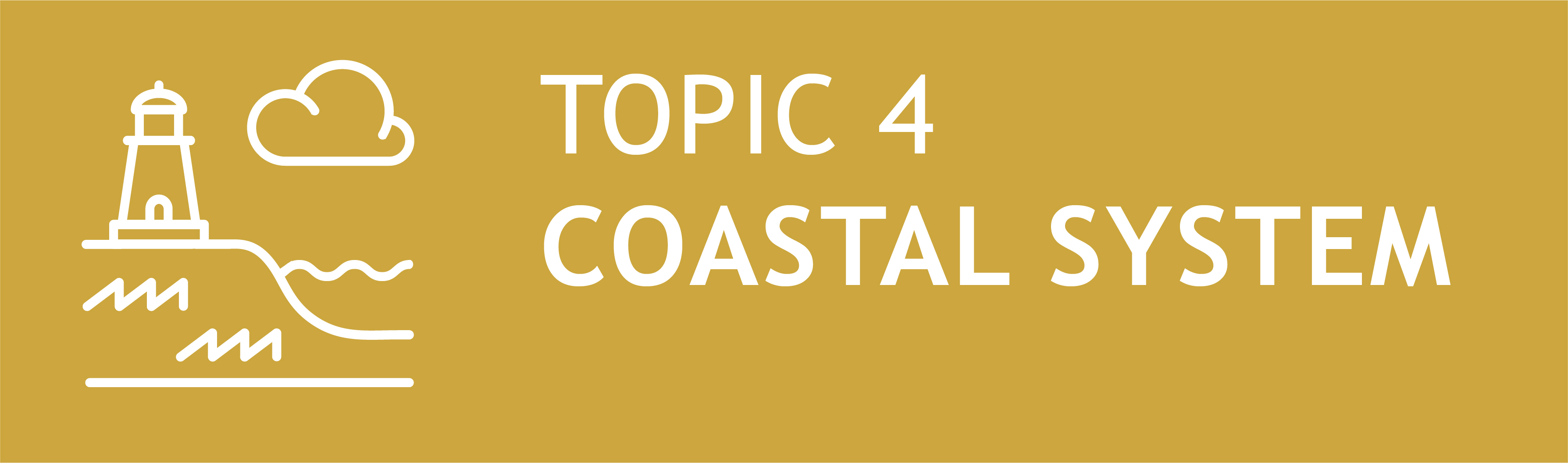 Icon Topic 4 Coastal Systems
