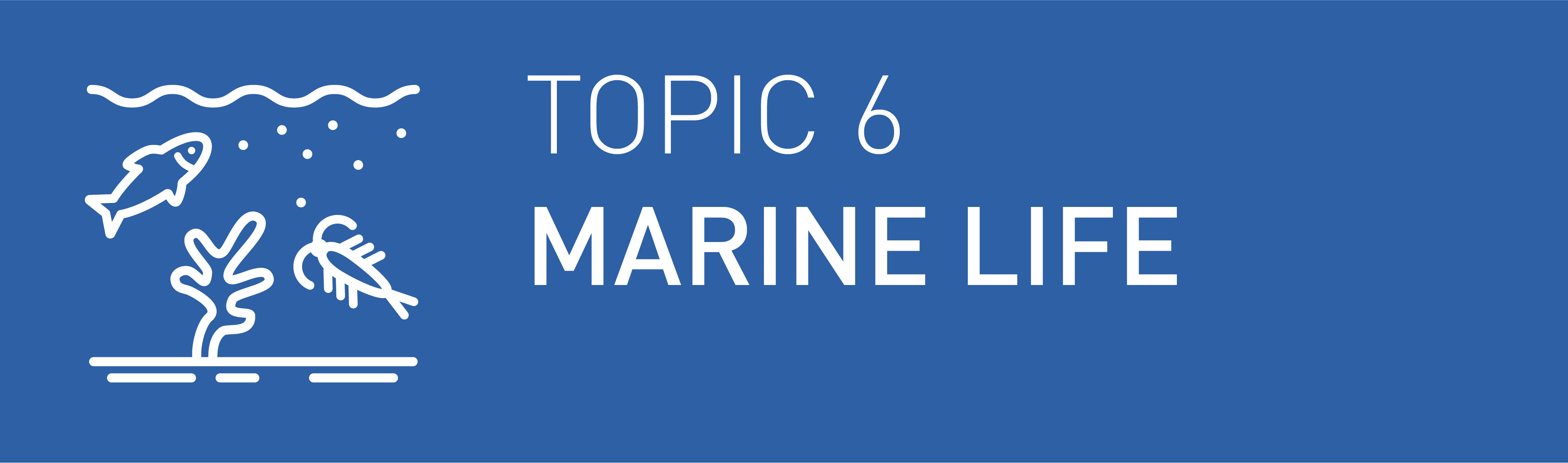 Icon Topic 6 Marine Life