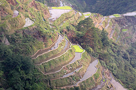The Banaue Rice Terraces are 2000-year old terraces that were carved into the mountains of Ifugao in the Philippines