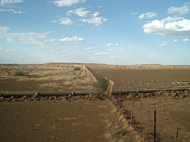 Overused versus rested pastures on livestock farms in Namibia