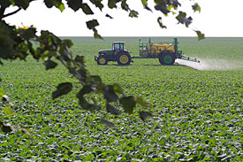 Use of pesticides in the agriculture