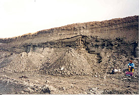 The open cast mine Neumark-Nord in Geiseltal valley near Merseburg was one of the four silted up lakes.