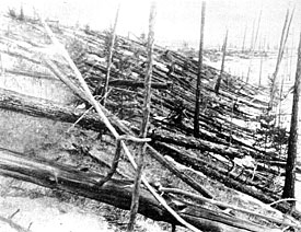 In 1927 Professor Leonid Kulik took the first photographs of the massive destruction of the taiga forest after the Tunguska catastrophe.