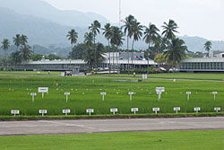 The International Rice Research Institute IRRI