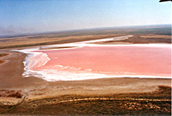 Salt lake in southern Russia