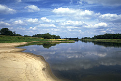 River Elbe Sand Bank, Germany