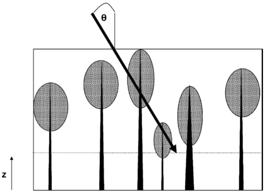 Pgap model schematic. The model estimates the probability of a beam at incident angle penetrating to a height z within the canopy of Poisson-distributed crowns and trunks. The beam can be downward-looking (shown here) or upward-looking. Crowns are modelled as porous ellipsoids and trunks as solid cones. For z > 0, we account for partial ellipsoids and cones. Crown and trunk heights and dimensions can assume any user-defined distributions.