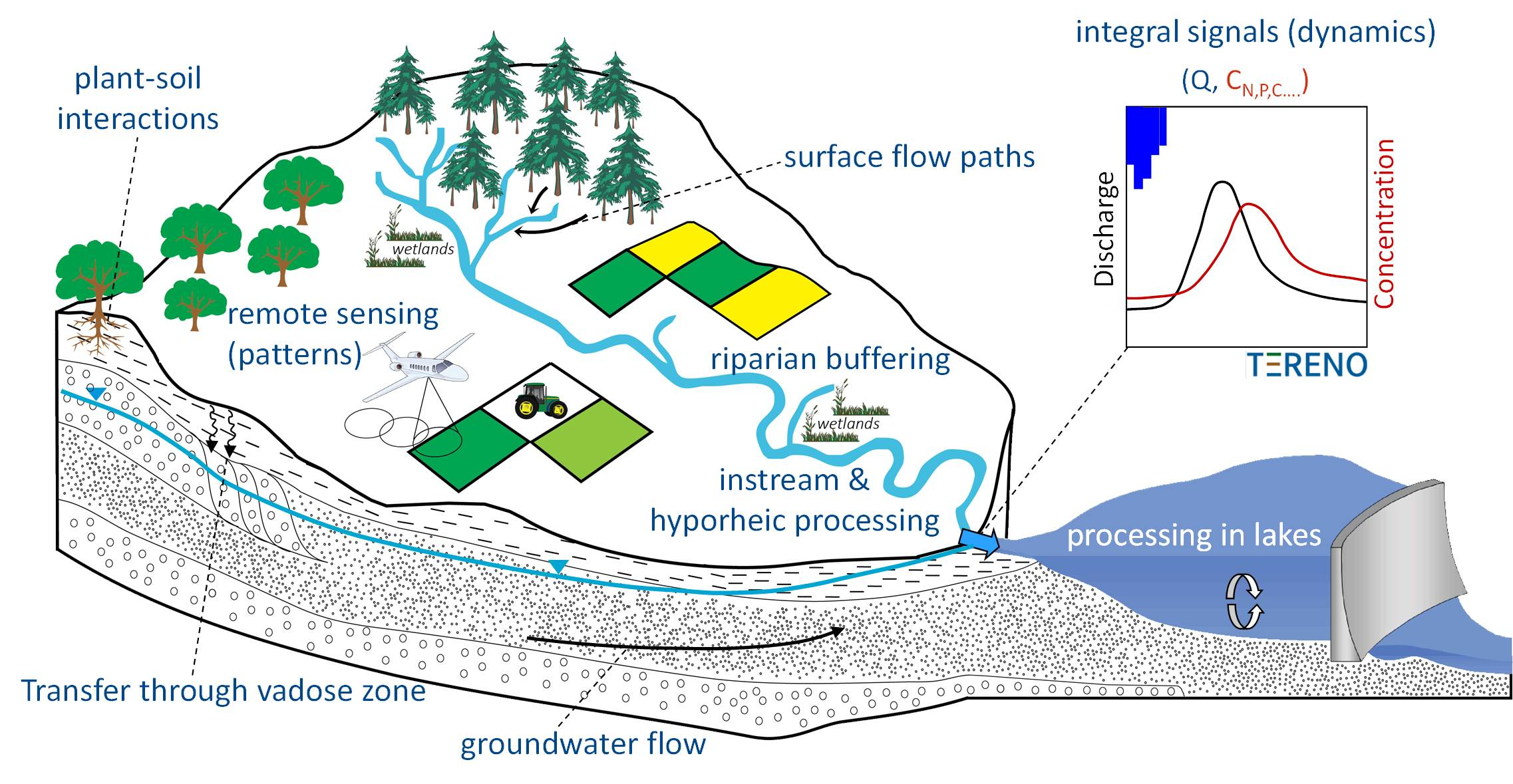 Water Amp Solute Dynamics In Catchments Helmholtz Centre