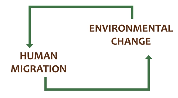 human migration and environmental change