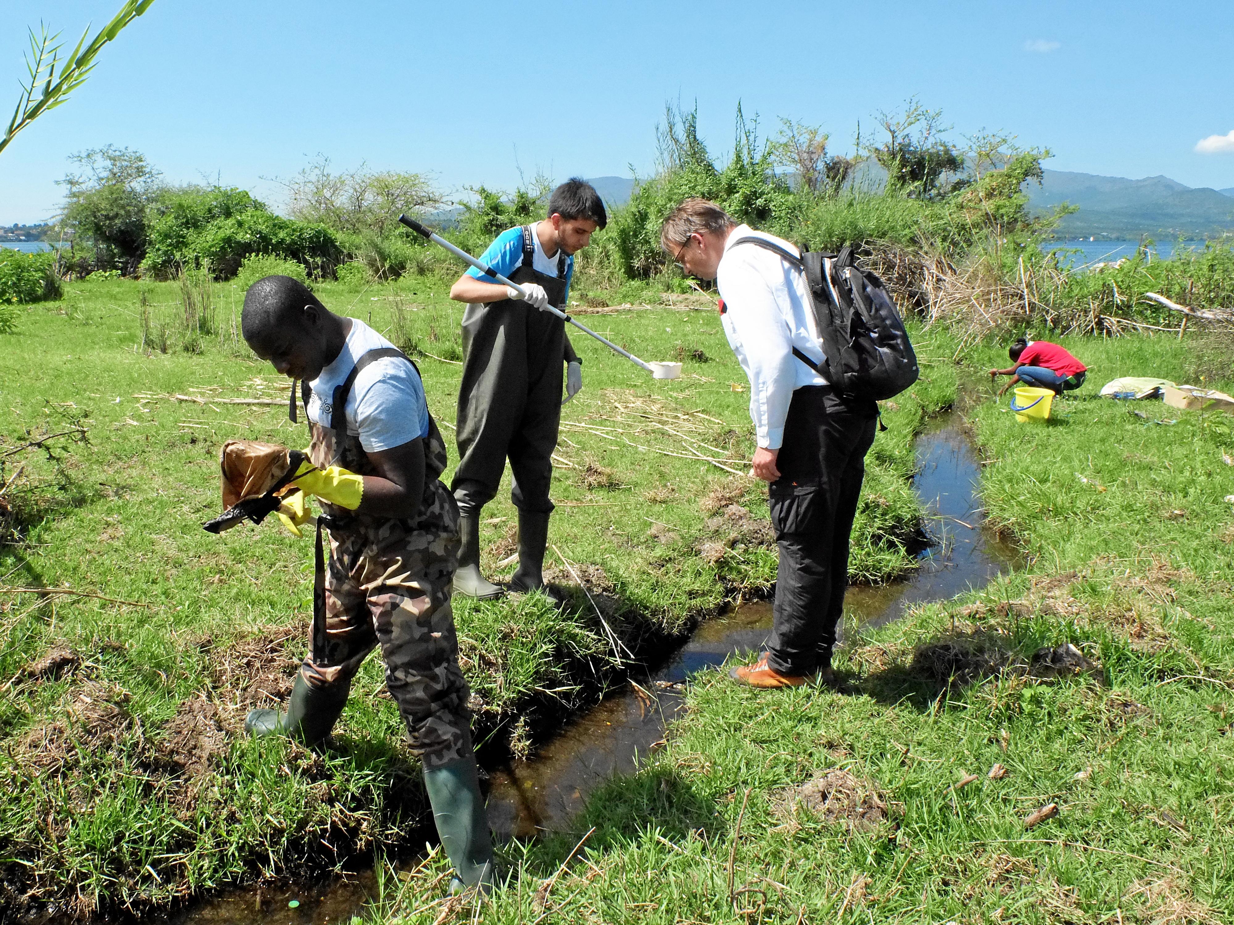 schistosomiasis kenia colpocid pentru condiloame